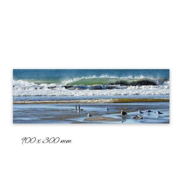 beach-outdoor-art-900x300